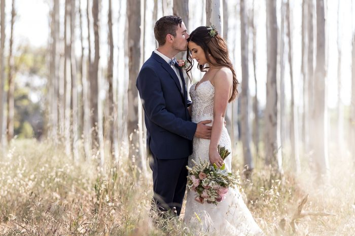 Groom kissing forehead of Bride in tall trees in sunlit forest